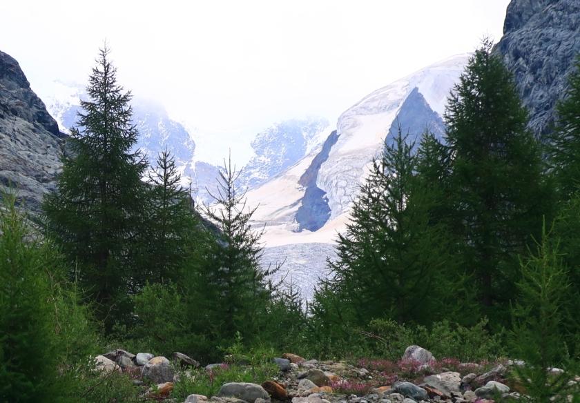 Gletschergarten10
